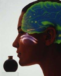 Rebecca Ginder Florida Aromatheraphy